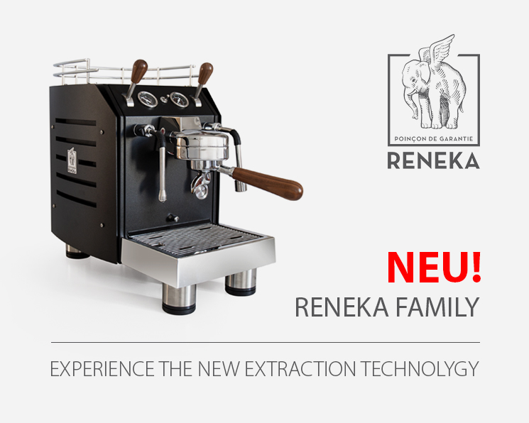 reneka-family-home-745x596